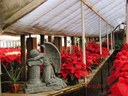 Sea of Red at Christmas Fantasy Open House